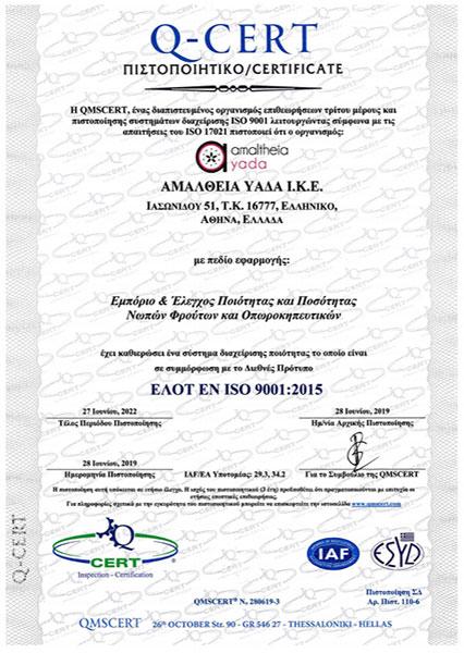 ISO 9001 EL