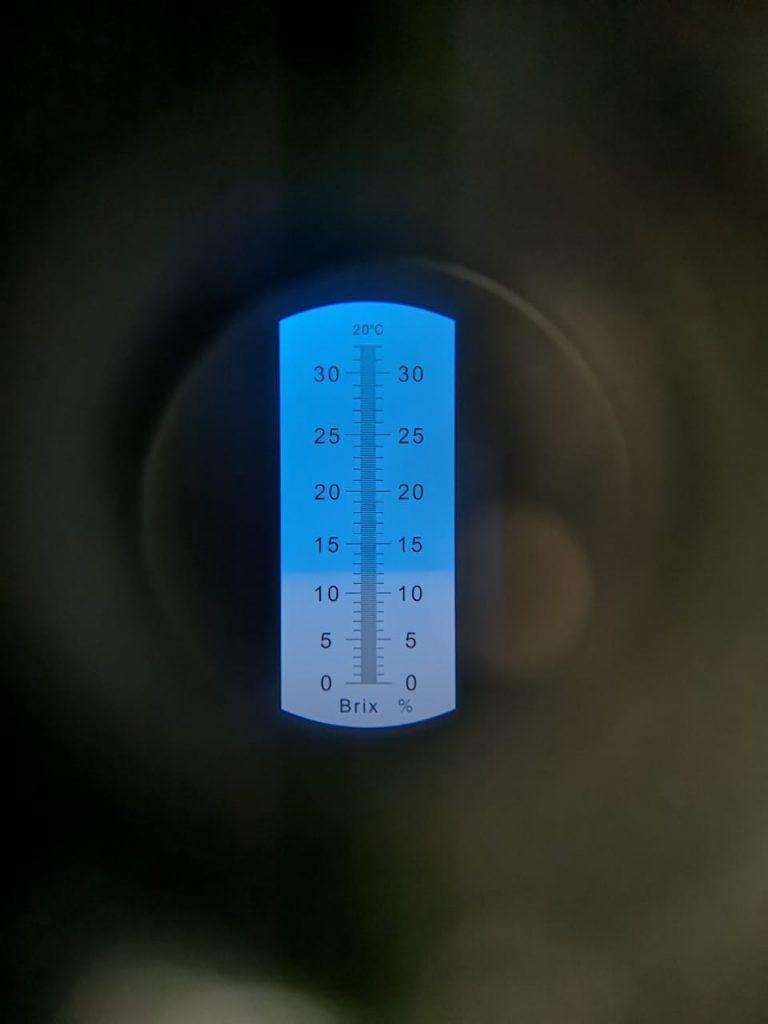 Brix range: 12-14 degrees (Bx)